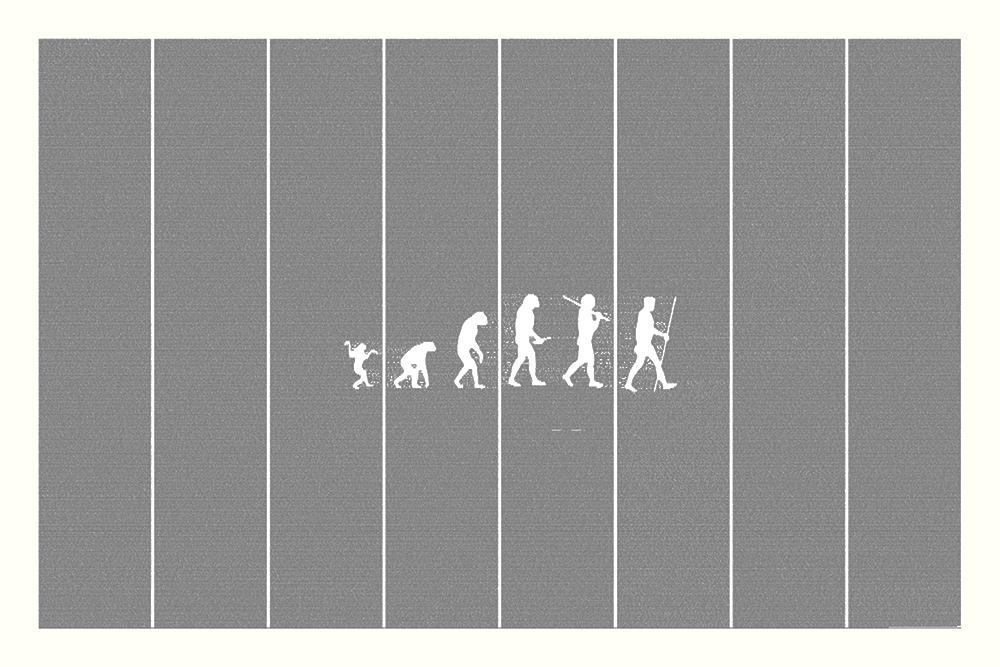 On the Origin of Species Book Poster