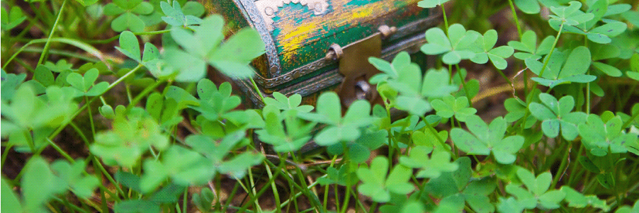 Treasure chest in clovers