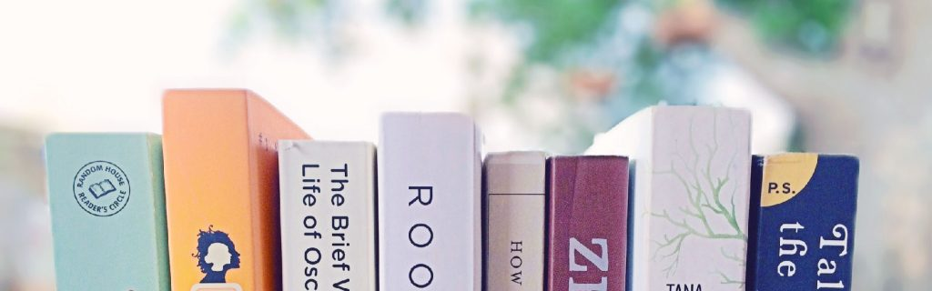Short Novels You Read in One Day blog post by Books on the Wall