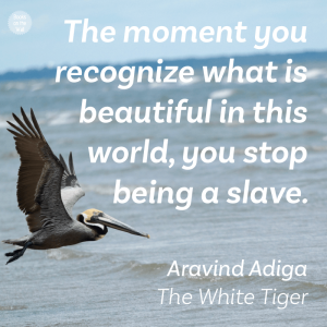 Aravind Adiga quote, The White Tiger